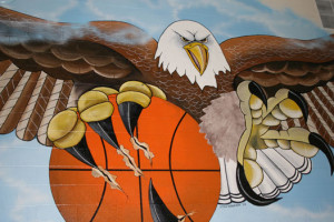web-eagle-mural-gym