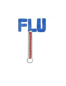 Flu Frenzy